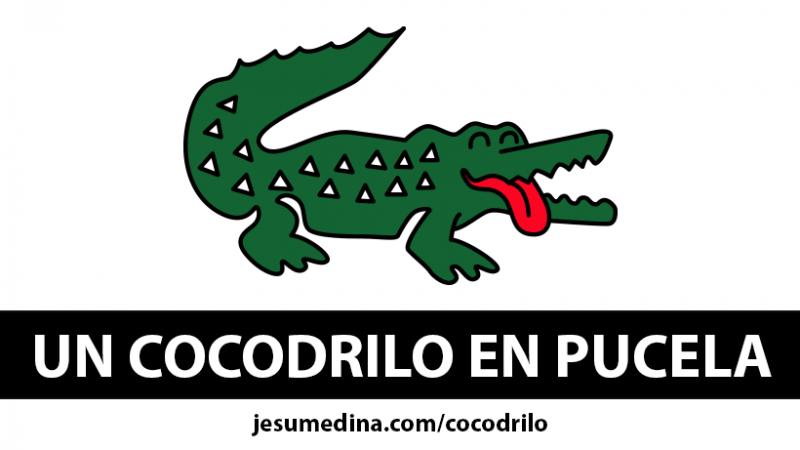 🐊 ¡Las CAMISETAS del COCODRILO de VALLADOLID!